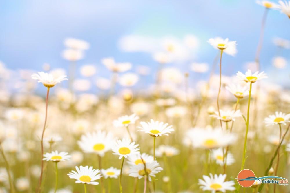 5 идеи за екскурзии през майските празници